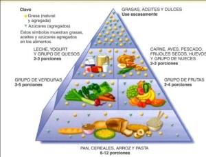 trriangulo de alimentacion
