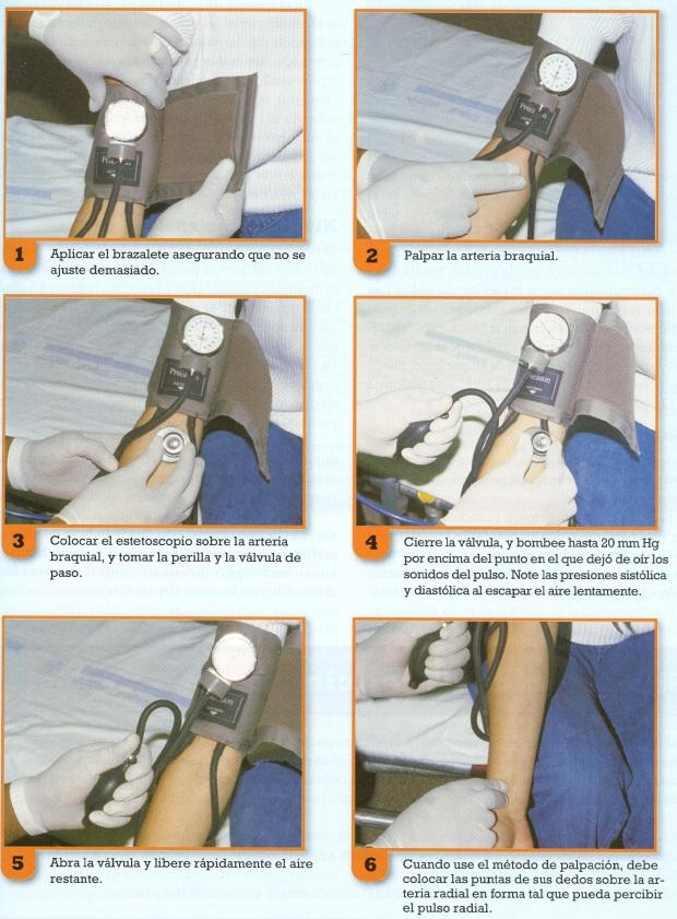 medicion tension arteria001