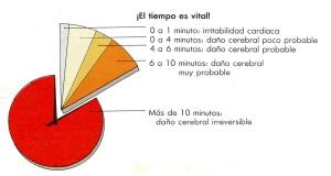 7-5 tiempo vital055