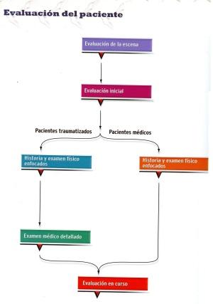 8 evaluacion del paciente027